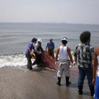 地曳網体験ツアーのサムネイル